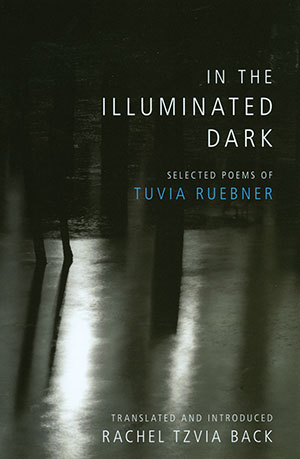 In the Illuminated Dark