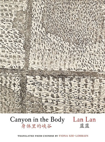 Canyon in the Body