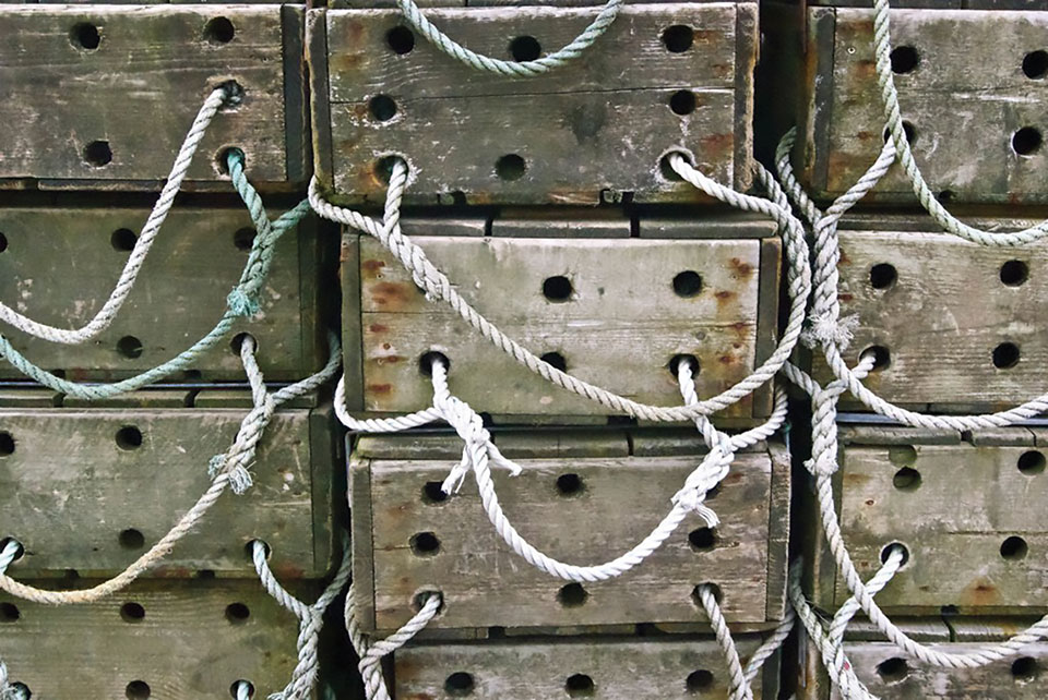 Crates. Photo by Fiona Baxter/Flickr