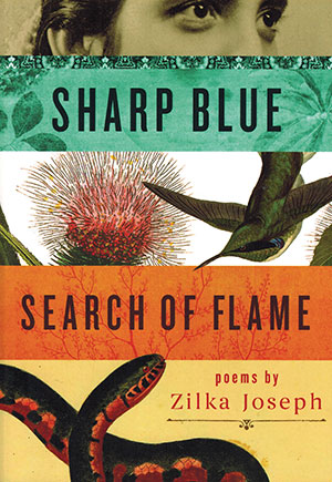 The cover to Sharp Blue Search of Flame by Zilka Joseph