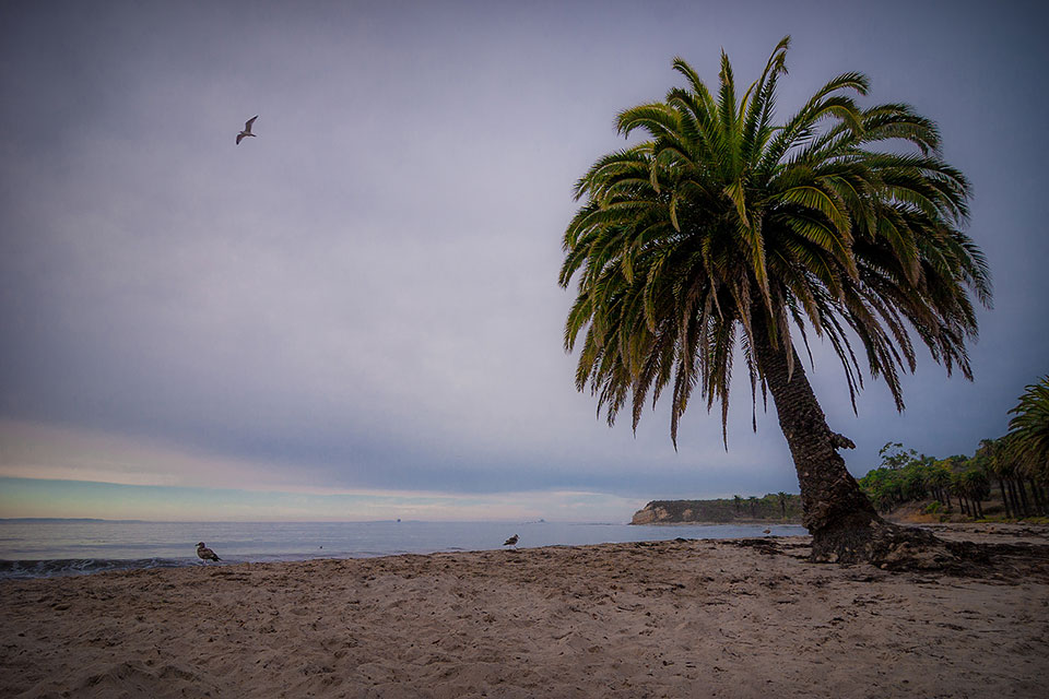 Refugio Beach. Photo by David Cantu.