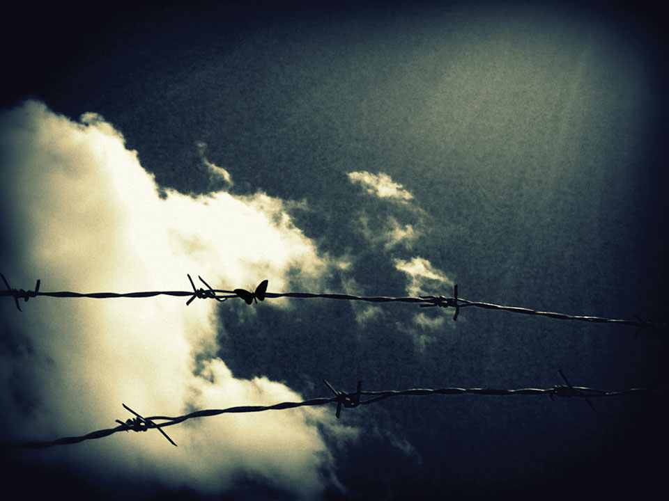 Two strands of barbed wire stand in the foreground against a backdrop of yellowish clouds in a wine-dark sky