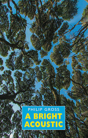 Cover to A Bright Acoustic by Philip Gross