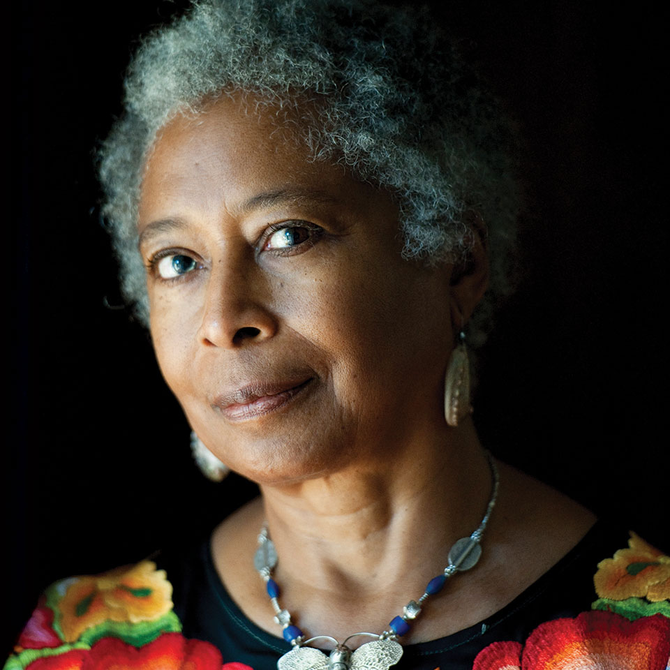 Image result for alice walker