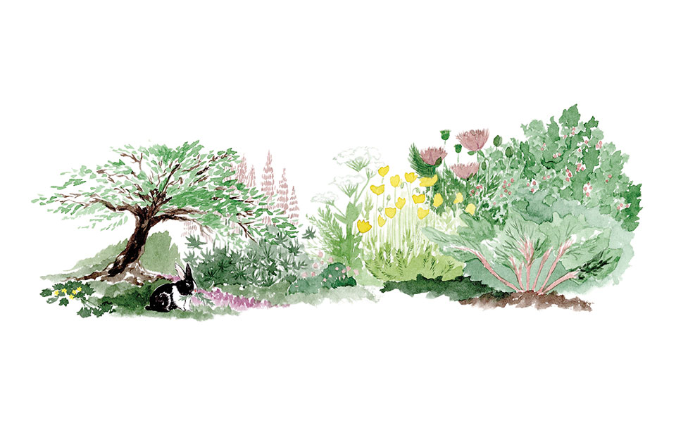 An illustration done in colored pencil of a rabbit sitting in a forest garden