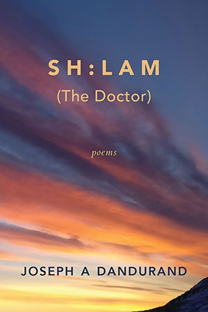 The cover to SH:LAM (The Doctor) by Joseph A. Dandurand