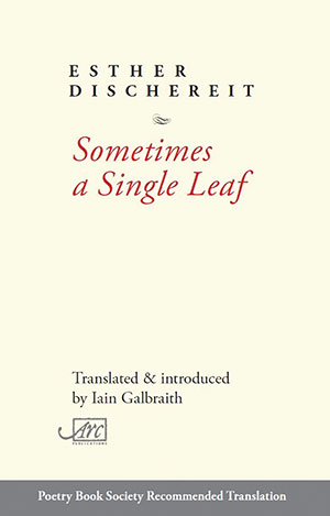 The cover to Sometimes a Single Leaf by Esther Dischereit