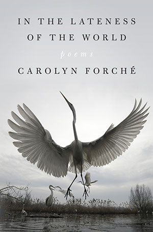 The cover to In the Lateness of the World by Carolyn Forché
