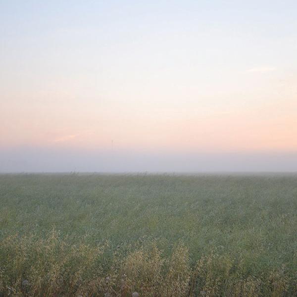 A verdant landscape stretches toward the horizon