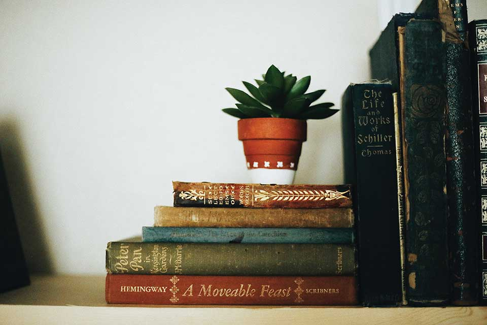 A photograph of a small stack of old books with a small succulent in a terra cotta pot resting on top of them
