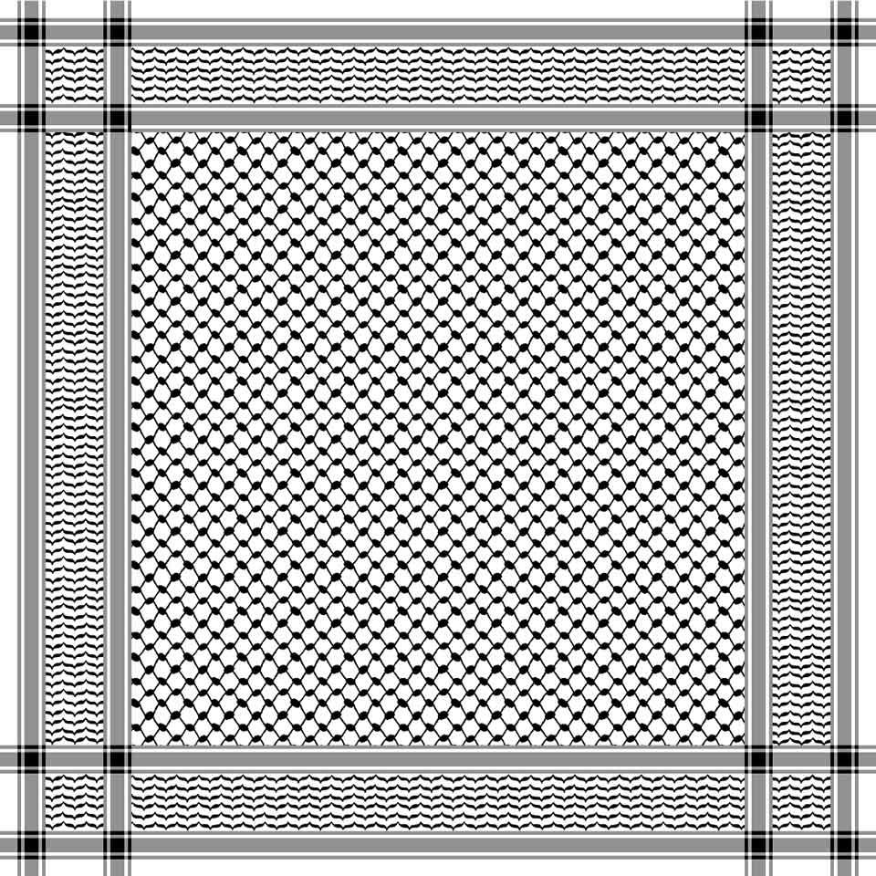 A geometric pattern of intricate interwoven lines