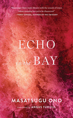 The cover to Echo on the Bay by Masatsugu Ono