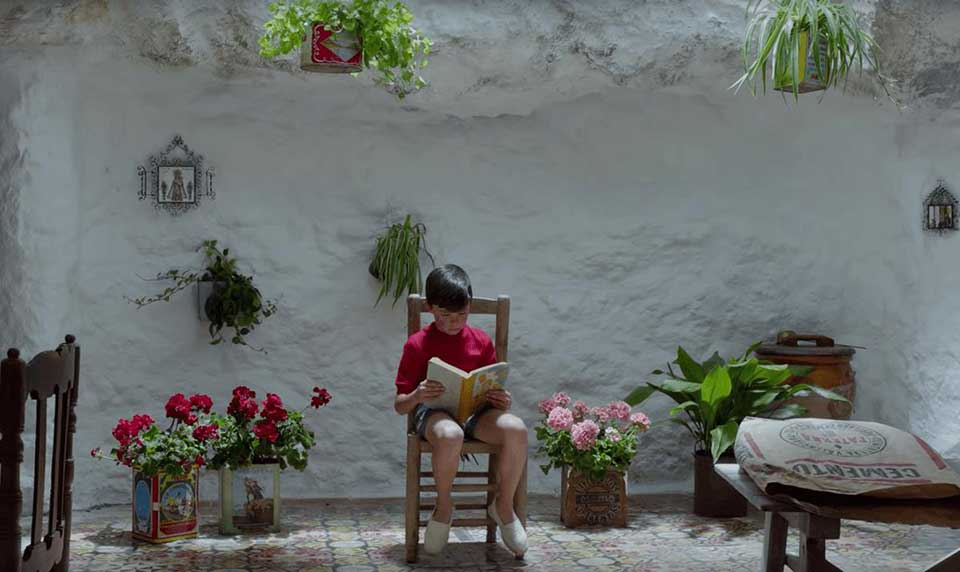 A boy sits in a chair reading in front of a wall