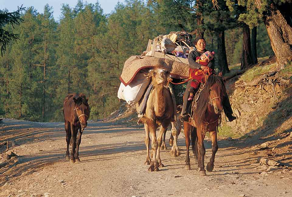 A nomadic woman carries a sleeping child, while riding a horse who, along with a tethered camel, are loaded down with packages. A pony trails behind, led by a rope.