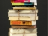 Nichole Reber books