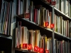 Library bookshelf with sunlight on book spines. Photo by Lubos Huska/Pixabay.