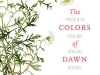 The cover to The Colors of Dawn: Twentieth-Century Korean Poetry