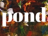 The cover to Pond by Claire-Louise Bennett