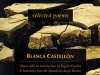 The cover to Water for Days of Thirst: Selected Poems by Blanca Castellón