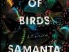 The cover to Mouthful of Birds by Samanta Schweblin