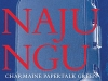 The cover to Nganajungu Yagu by Charmaine Papertalk Green