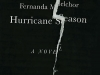 The cover to Hurricane Season by Fernanda Melchor