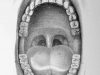 A pencil drawing of the interior of a human mouth