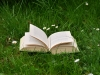 Book outside in grass