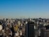 Sao Paulo photo by Mau Alcântara