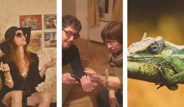 A triptych of (left to right) a woman in a broad brimmed hat, a man and a woman looking at something on a phone, and an iguana