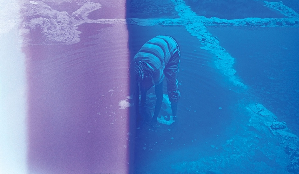 A photograph of a human figure bent over at the waist, hands submerged in a shallow pool that appears to be part of a man-made lagoon system. The photo is tinted, violet on the left and blue on the right