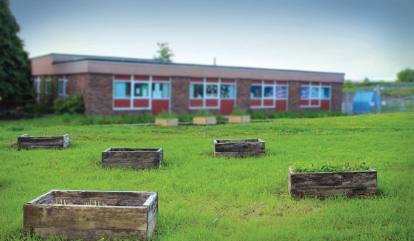 Small raised bed gardens dot the lawn of an empty schoolyard