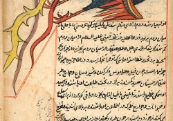 A simurgh (a monstrous mythical bird with the power of reasoning and speech). From Marvels of Things Created and Miraculous Aspects of Things Existing, by al-Qazwīnī (d. 1283/682). Courtesy of the National Library of Medicine, Islamic Medical Manuscripts collection.