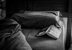 Open book on a bed. Photo by Steve Petrucelli