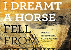 The cover to I Dreamt a Horse Fell from the Sky by Adil Jussawalla