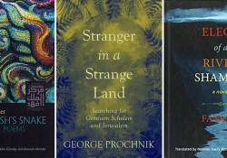 Rob's Summer Reads Books