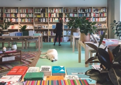 Bookcases and a dog inside Commonplace Books in Oklahoma City.