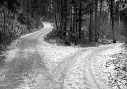 Snowy roads at a crossroads with trees. Photo: Daniel Ebneter/Flickr