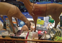 An imaginative holiday window display with faux-reindeer at The Wild Rumpus bookstore