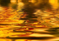 Light from a sunset reflected in water