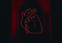 The red neon outline of a heart sits on a black background with crimson frames surrounding the heart