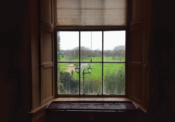 A photograph shot from inside a dark house, looking out a nearby window where greenery rolls out like a lush carpet beneath clouded skies