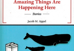 The cover to Amazing Things Are Happening Here by Jacob M. Appel