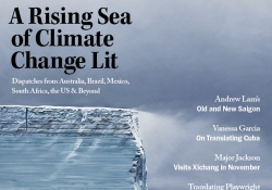 The cover to the Summer 2019 issue of WLT
