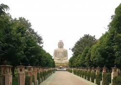 A giant statue of the Buddha as seen down a wide lane, flanked by trees on both sides
