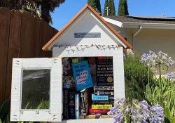 A small outdoor library with books inside an open door
