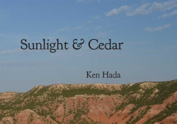 A cropped detail of the cover to Ken Hada's Sunlight & Cedart