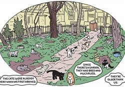 An oval shaped comics panel with many cats inhabiting an unkempt urban landscape