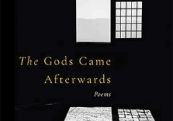 The cover to The Gods Came Afterwards by Sharmistha Mohanty
