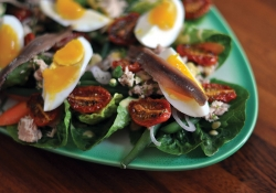 A close up photograph of a Nicoise salad